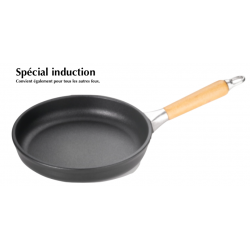 ø 20 cm poele induction